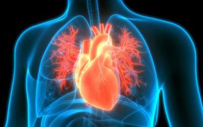 Alteração na Tireoide e doenças do coração